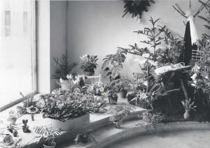 Schaufensterdekoration 50er Jahre