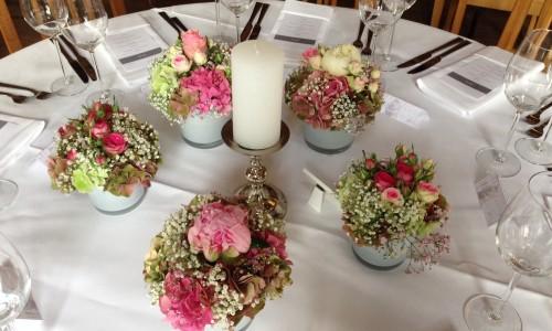 Impressionen Blumen Rampp
