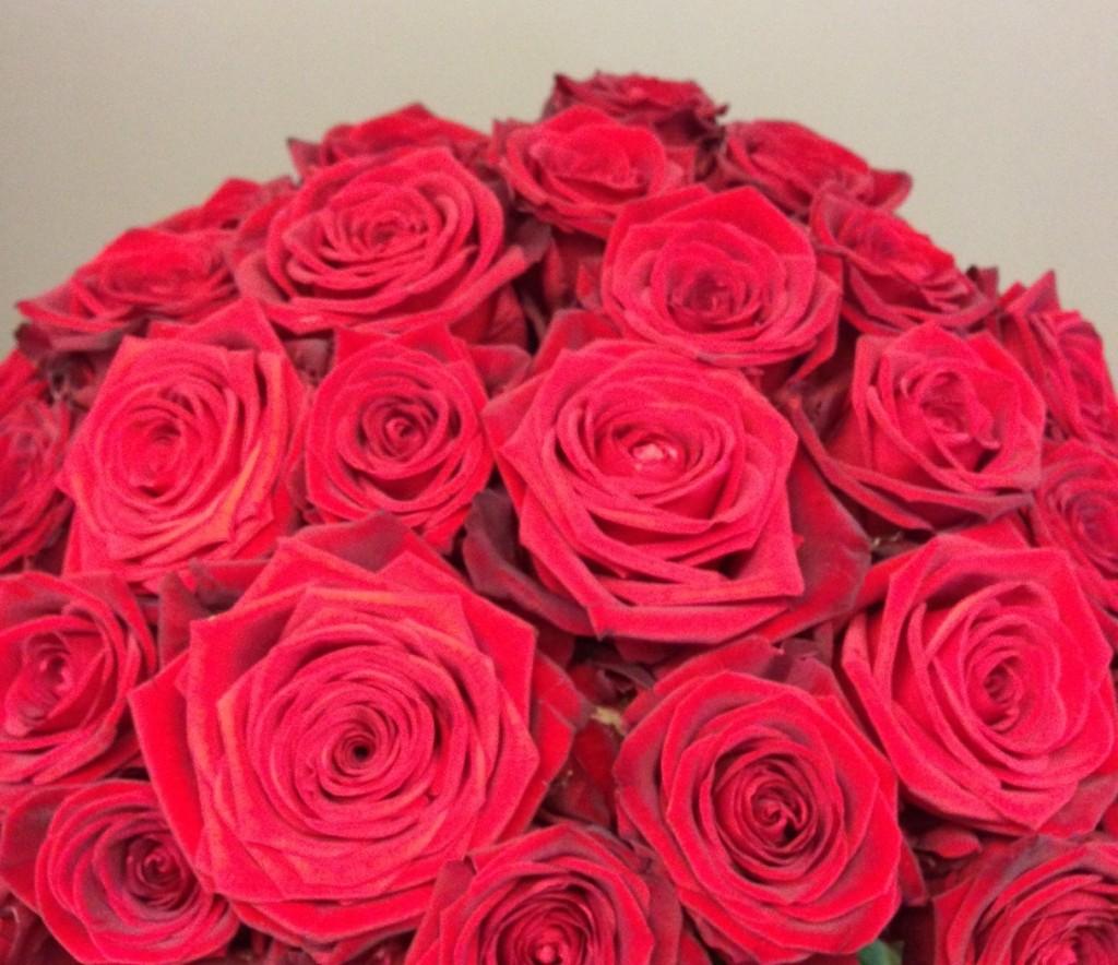 Valentinstag_roteRosen