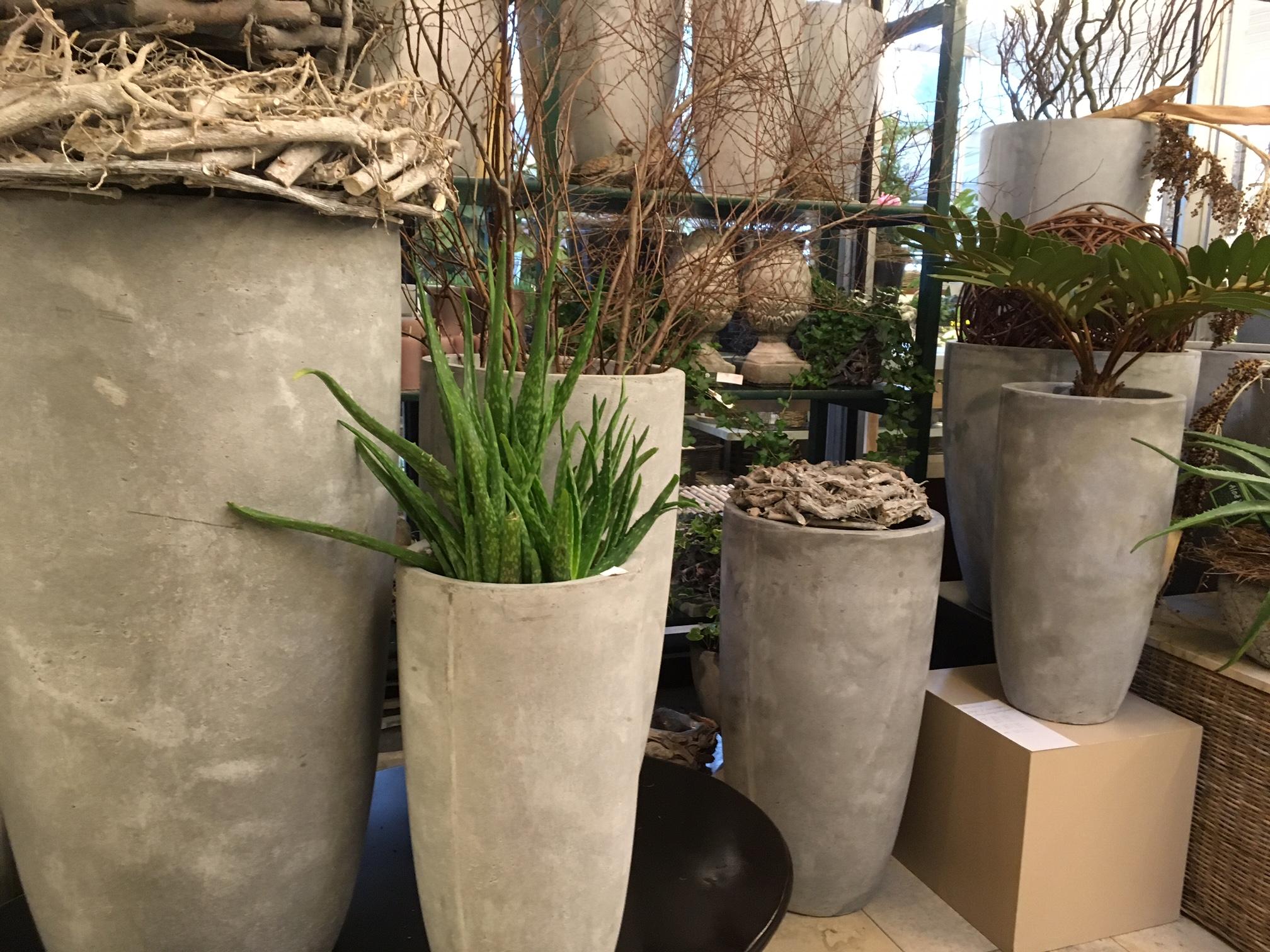 blumen rampp das neue gr n warum wir mit pflanzen. Black Bedroom Furniture Sets. Home Design Ideas
